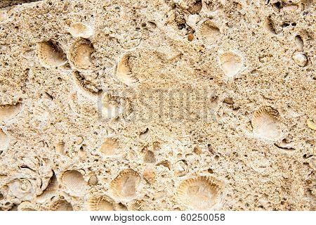 Surface Of The Old Antique Brown Stone