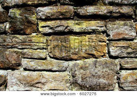 Wall Fragment