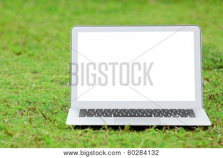 Laptop with blank screen on green lawn
