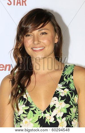 LOS ANGELES - FEB 22: Briana Evigan at the Abercrombie & Fitch 'The Making of a Star' Spring Campaign Party on February 22, 2014 in Los Angeles, CA