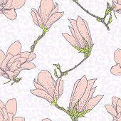 image of magnolia  - Vintage vector pattern with pink magnolia flowers on white damask background - JPG