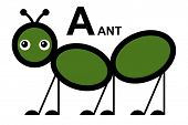 illustration of isolated animal alphabet. A is for ant. Vector illustration.
