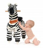 image of baby cowboy  - 9 month child baby toddler sit on her knees and play with big zebra horse toy on a white background - JPG