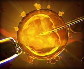 foto of insemination  - 3d version of artificial insemination in orange - JPG