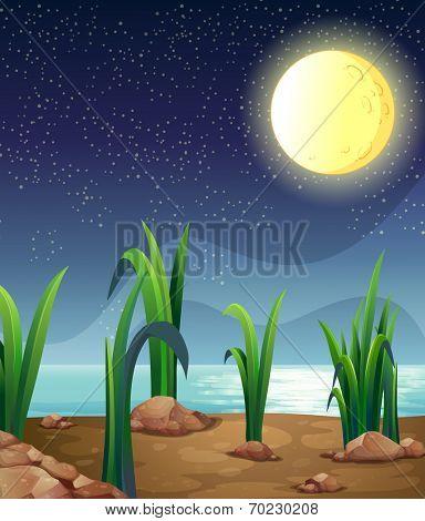 Illustration of a bright fullmoon