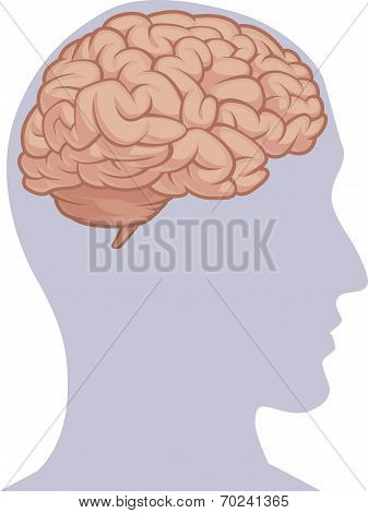 Human Body Part - Brain Inside Head Silhouette