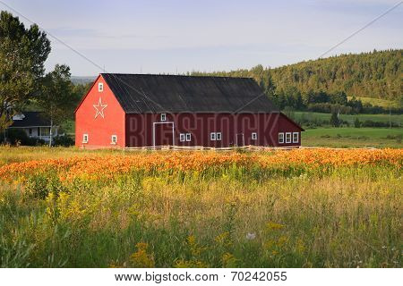 Barn In New Brunswick