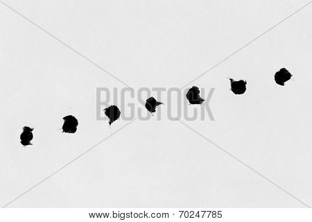 Holes On Paper