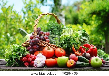 Variety Of Fresh Organic Vegetables In The Garden