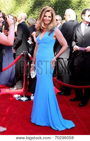 LOS ANGELES - AUG 16:  Maria Shriver at the 2014 Creative Emmy Awards - Arrivals at Nokia Theater on August 16, 2014 in Los Angeles, CA