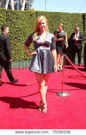 LOS ANGELES - AUG 16:  Amy Schumer at the 2014 Creative Emmy Awards - Arrivals at Nokia Theater on August 16, 2014 in Los Angeles, CA