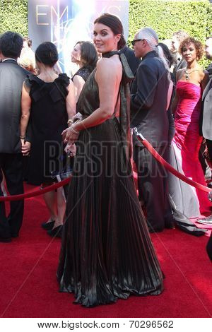 LOS ANGELES - AUG 16:  Bellamy Young at the 2014 Creative Emmy Awards - Arrivals at Nokia Theater on August 16, 2014 in Los Angeles, CA