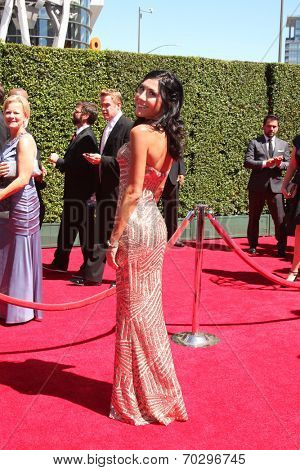 LOS ANGELES - AUG 16:  Venus Faas at the 2014 Creative Emmy Awards - Arrivals at Nokia Theater on August 16, 2014 in Los Angeles, CA