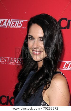 LOS ANGELES - AUG 14:  Katie Savoy at the Crackle Presents the Premieres of