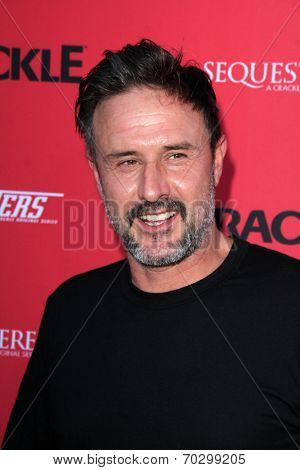 LOS ANGELES - AUG 14:  David Arquette at the Crackle Presents the Premieres of