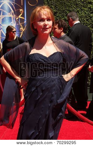 LOS ANGELES - AUG 16:  Kate Burton at the 2014 Creative Emmy Awards - Arrivals at Nokia Theater on August 16, 2014 in Los Angeles, CA