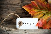 foto of say goodbye  - A Autumnal Background with a Label on which stands Goodbye - JPG