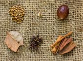 picture of mace  - star anise cloves cinnamon sticks nutmeg and mace spice on sack background - JPG