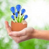 stock photo of photosynthesis  - Hand holding light bulbs growing out of the egg  - JPG