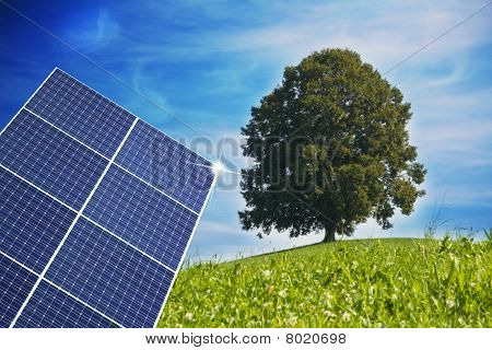 Solarpanel mit baum