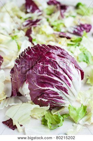 Radicchio With Iceberg, Romaine Lettuce Leaves