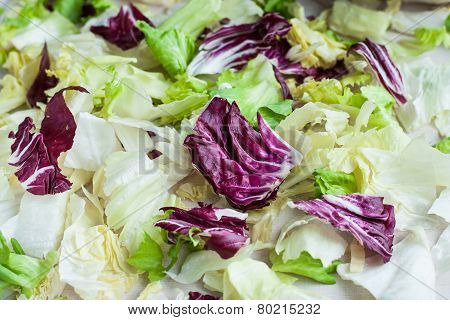 Salad Leaves With Iceberg, Romaine Lettuce And Radicchio As A Background