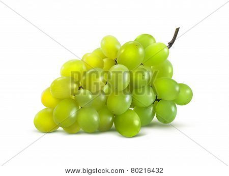 Green Grapes Horizontal No Leaf Isolated On White Background
