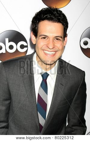 LOS ANGELES - JAN 14:  Andrew Leeds at the ABC TCA Winter 2015 at a The Langham Huntington Hotel on January 14, 2015 in Pasadena, CA