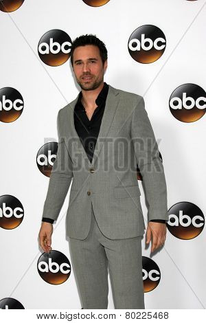 LOS ANGELES - JAN 14:  Brett Dalton at the ABC TCA Winter 2015 at a The Langham Huntington Hotel on January 14, 2015 in Pasadena, CA