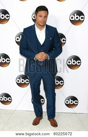 LOS ANGELES - JAN 14:  Nick Wechsler at the ABC TCA Winter 2015 at a The Langham Huntington Hotel on January 14, 2015 in Pasadena, CA