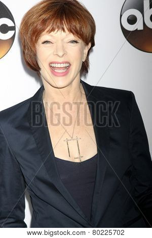 LOS ANGELES - JAN 14:  Frances Fisher at the ABC TCA Winter 2015 at a The Langham Huntington Hotel on January 14, 2015 in Pasadena, CA