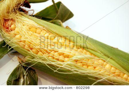 Corn on cobb