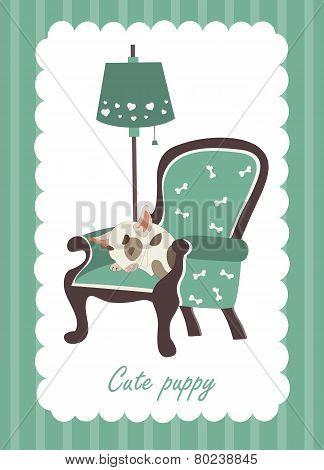 Cute dog sleeping in armchair