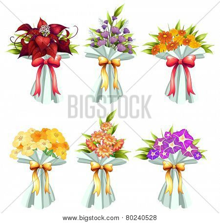 Illustration of six bunches of flowers