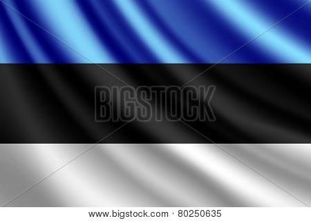 Waving flag of Estonia, vector