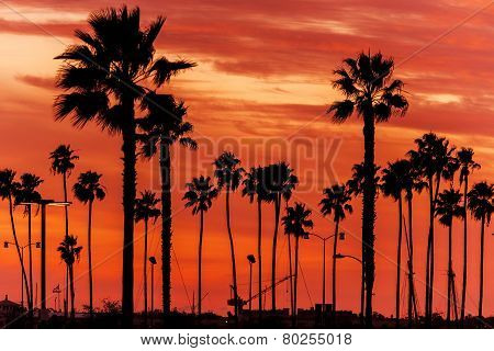 California Sanset Scenery