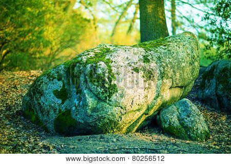 Magic Mossy Boulder