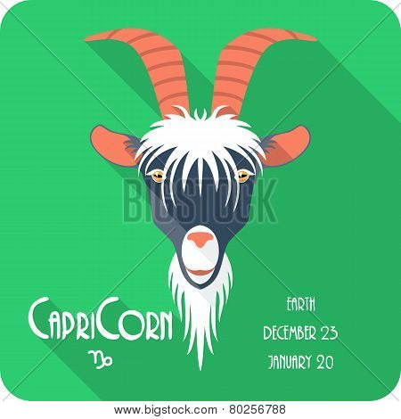 Zodiac sign Capricorn icon flat design