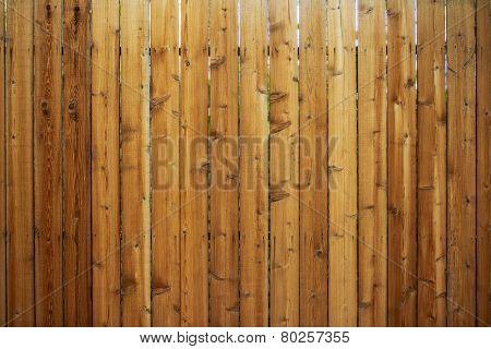 Wood Fence Backdrop