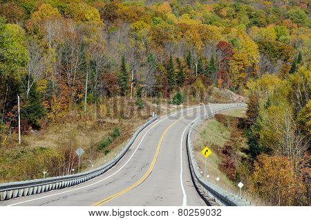 Road In Algonquin Park