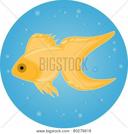 Gold Fish in Water With Bubbles
