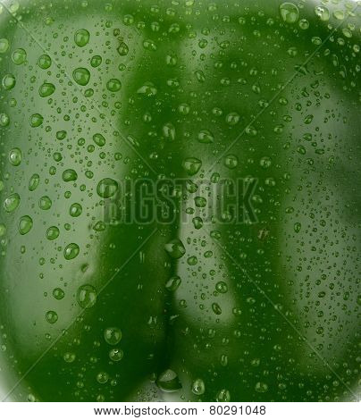 Background Of Wet Green Bell Pepper