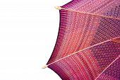 image of handicrafts  - Thailand pattern silk umbrella and sky blue art artist handicraft beach isolated on white background - JPG