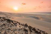 foto of dune  - Sunset on sand dunes in Chaves beach Praia de Chaves in Boavista Island Cape Verde  - JPG