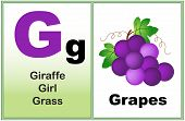 stock photo of kindergarten  - Alphabet letter G with clip - JPG