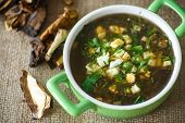 stock photo of sorrel  - sorrel soup with dried mushrooms in a bowl - JPG
