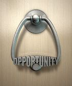 ������, ������: Opportunity Knocks Door Knocker