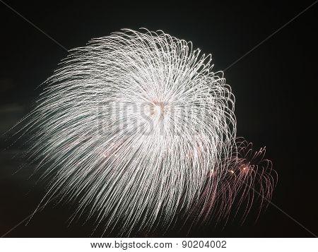 Beautiful White Balloon Fireworks