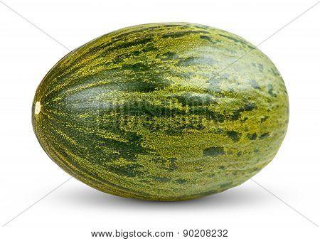One Fresh Whole Piel De Sapo Melon On White Background
