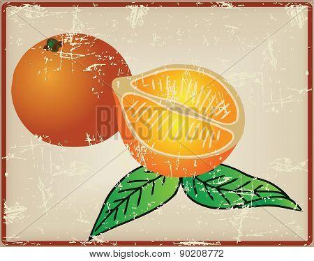 Citrus Fruit - Oranges